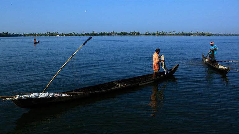 Ashtamudi Backwaters
